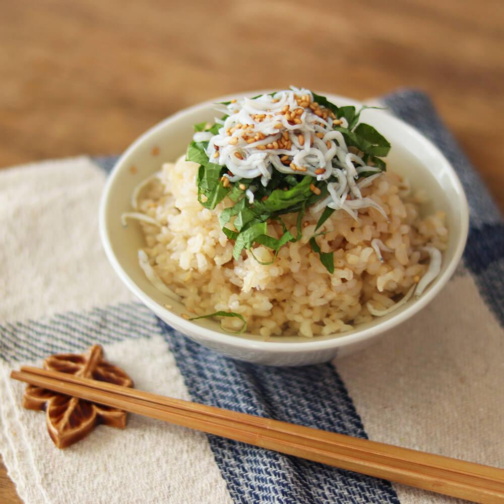 だしを冷やして玄米ごはんにかければ、冷やし茶漬けに。