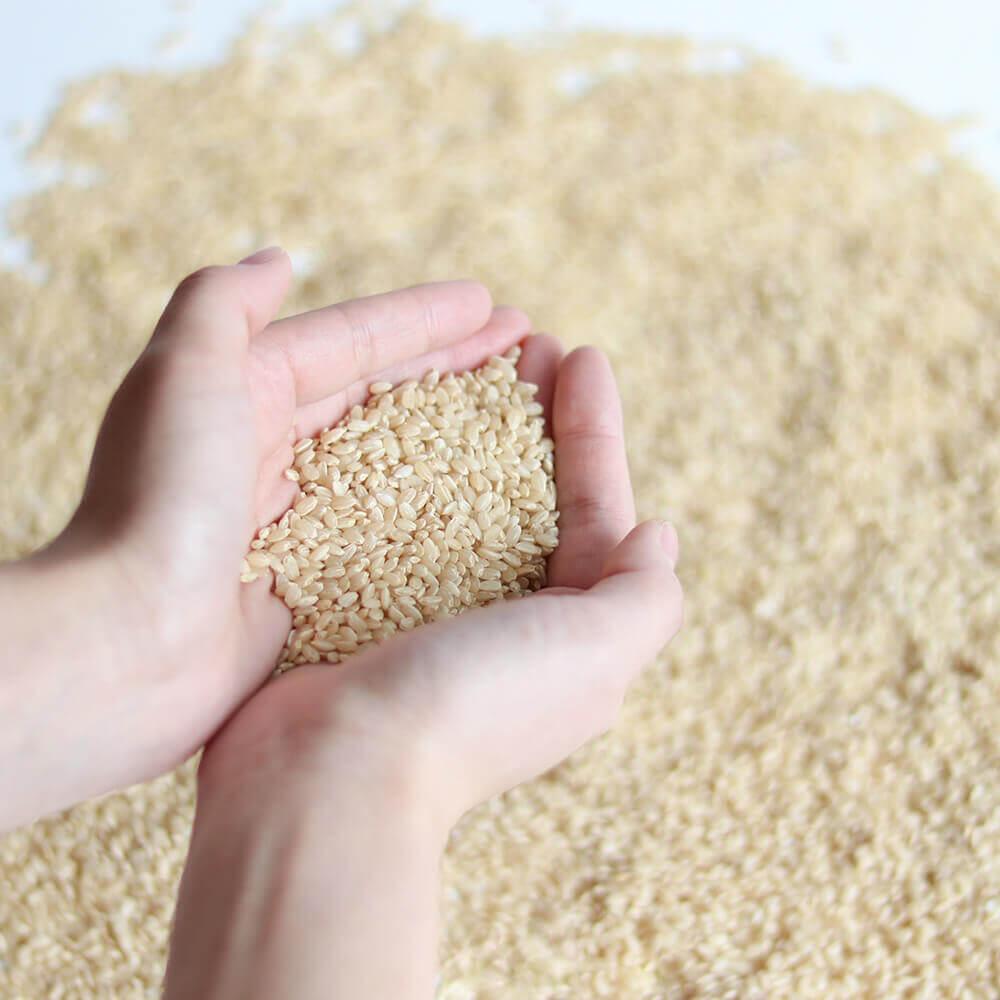 玄米甘酒に使用している原料は、玄米と糀のみ。シンプルな原料だから安心してお召し上がりいただけます。
