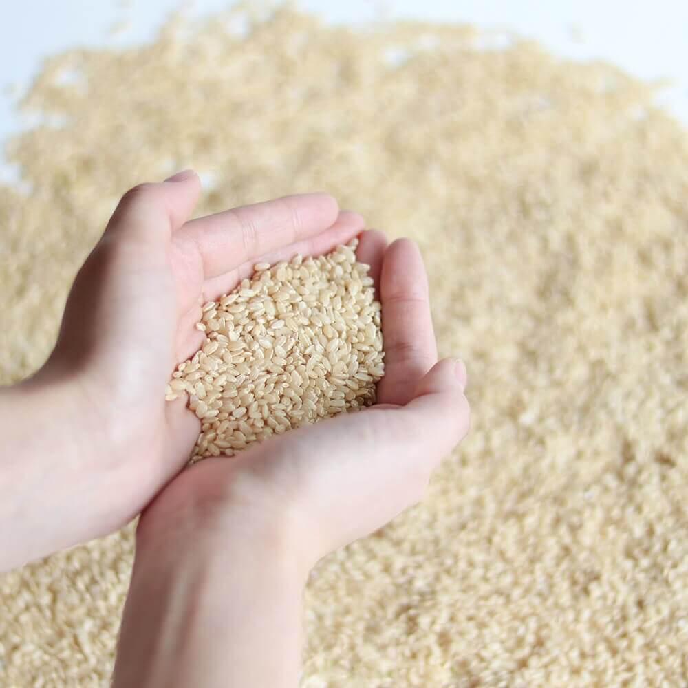 玄米と糀を使用した玄米甘酒は、砂糖不使用・ノンアルコール。