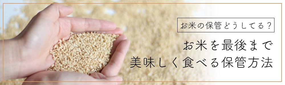 お米の保管どうしてる? お米を最後まで美味しく食べる保管方法