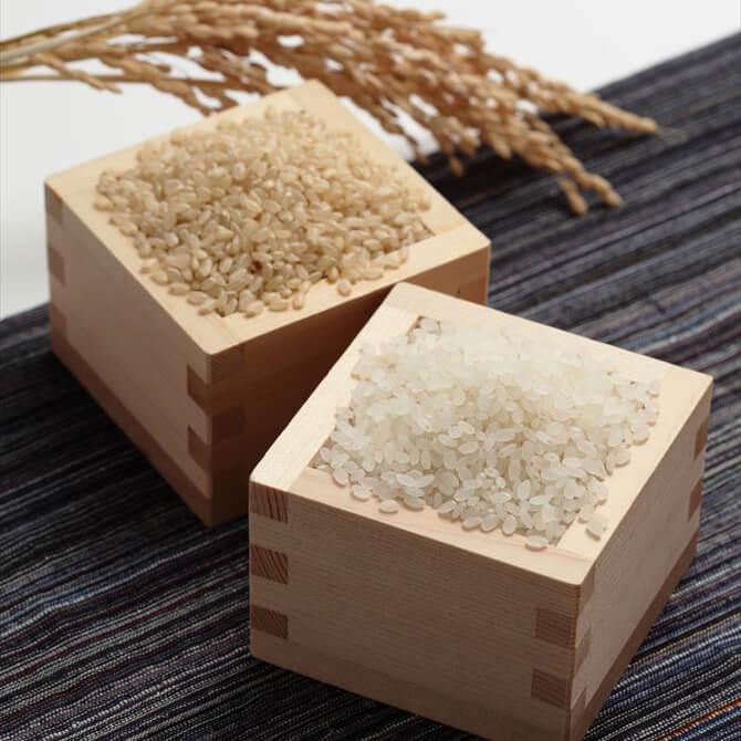 玄米と白米のちがい理解してる?<br>健康&美容に玄米が効くワケ
