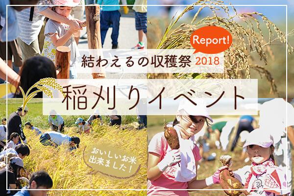 サツマイモ収穫&餅つきも! 結わえるの収穫祭2018をレポート