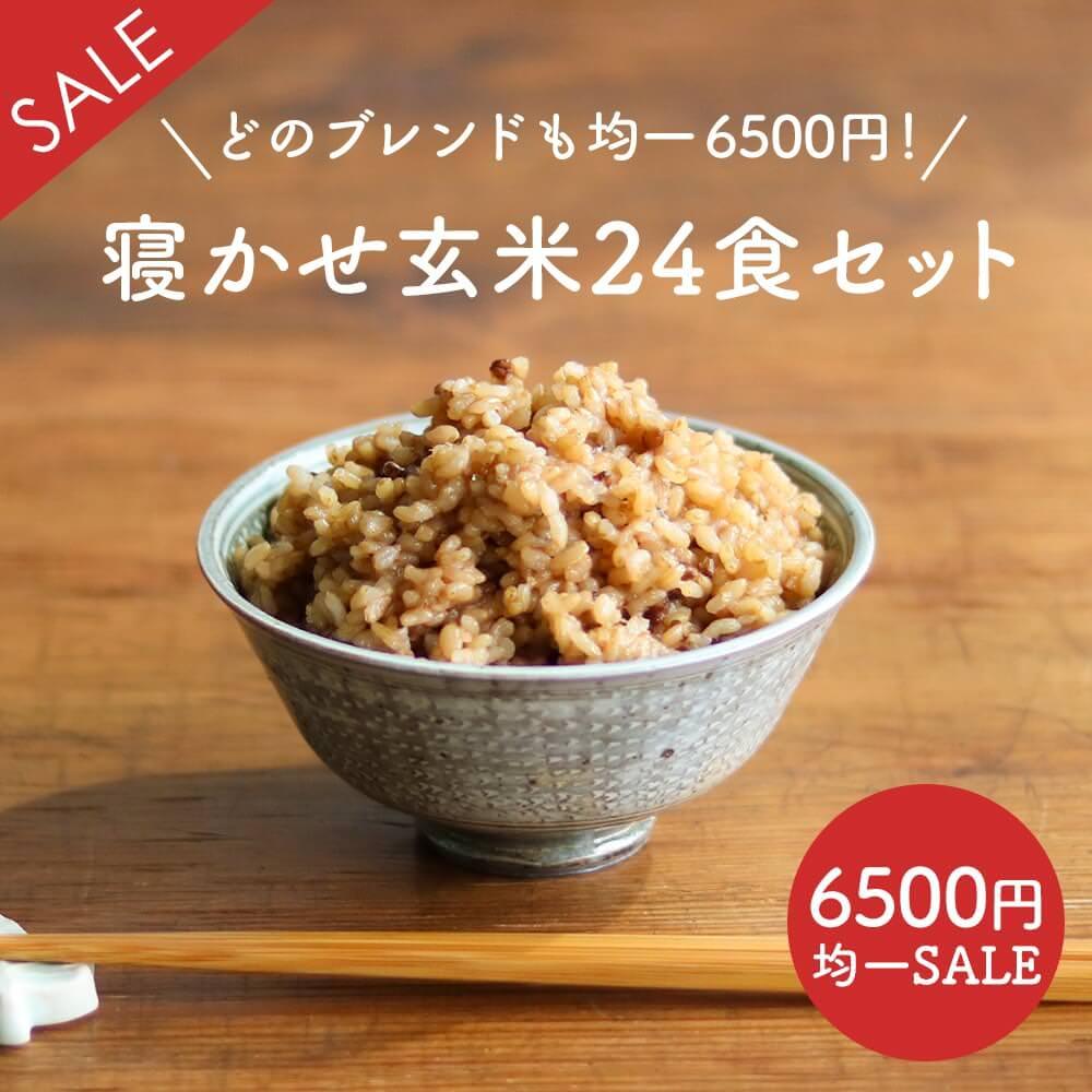 【訳あり均一SALE】寝かせ玄米ごはんパック 24食セット【送料無料】