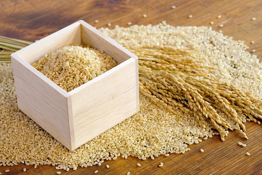 升に入った玄米と稲穂のイメージ。
