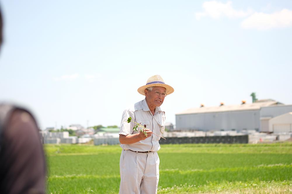 農家の吉田さん