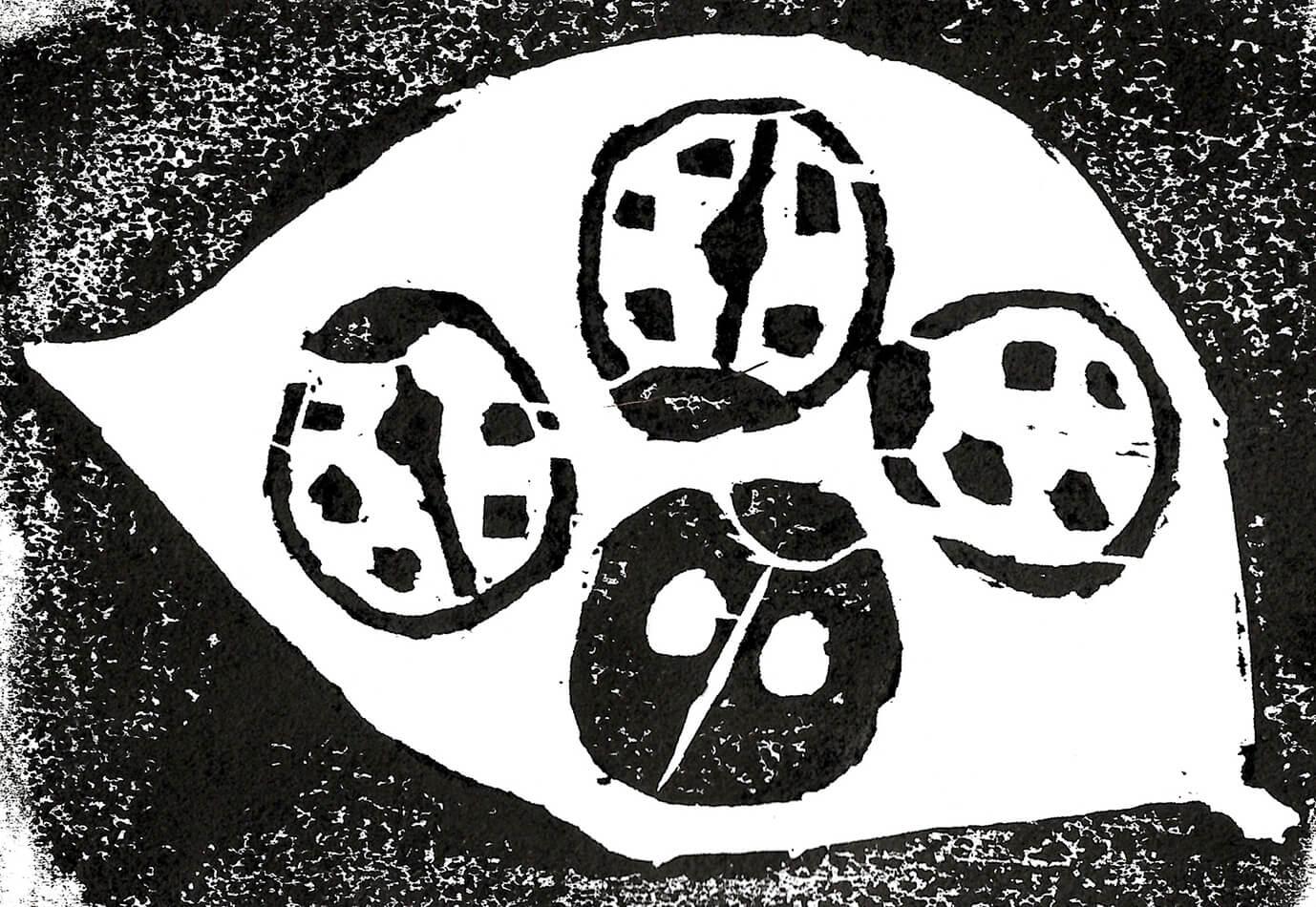 【Patina哲学】第九回 ガジュマルの木