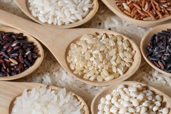 """糖質制限ダイエットはカラダが老ける!?<br>人間の主食が穀物""""米・玄米・小麦""""なワケ"""