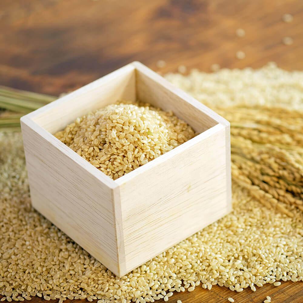 玄米甘酒に使用している原料は、玄米と糀のみ。シンプルな原料だから安心してお飲みいただけます。
